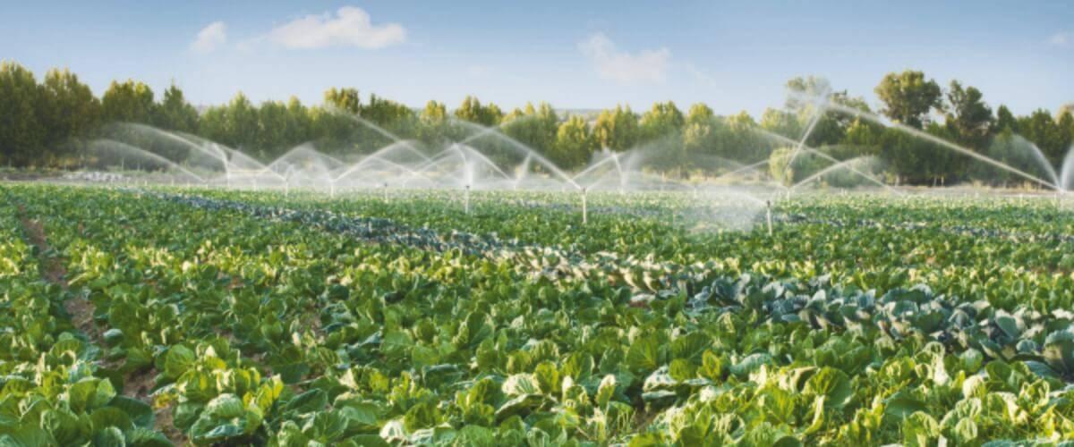 Irrigation Systems & Equipment